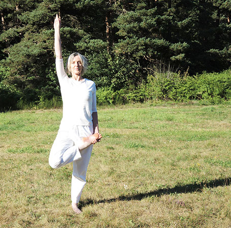 Vrikshasana - posture arbre - variation de la jambe