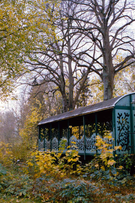 Railway car in a colorful autumn scenery.