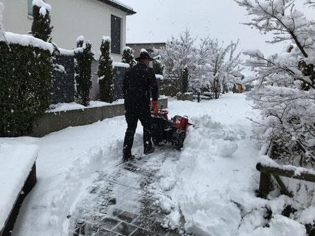 LLB Labhart Liegenschaften Betreuung Winterdienst Schneeräumung