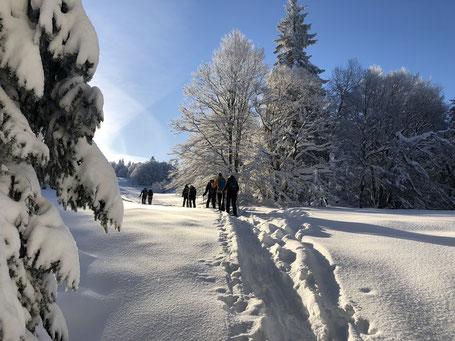Geführte Wanderung & Schneeschuhtour