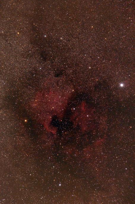 NGC 7000 - Nordamerikanebel, IC 5070 Pelikannebel