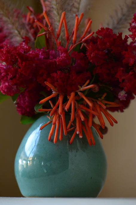 small sunny garden, desert garden, amy myers, photography, in a vase on monday, monday vase, lagerstroemia, hamelia, patens, dynamite, stoneware, ceramics, pottery, pennisetum, rubrum