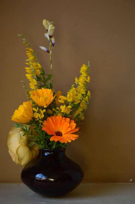 small sunny garden, desert garden, amy myers, photography, in a vase on monday, iavom, monday vase