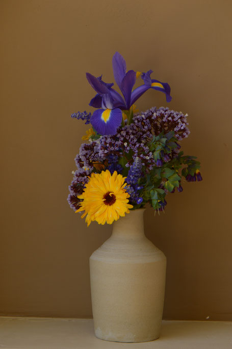 small sunny garden, desert garden, amy myers, photography, garden photography, in a vase on monday, iavom, monday vase, iris, dutch, blue magic, stoneware, pottery, ceramics, calendula, limonium perezii