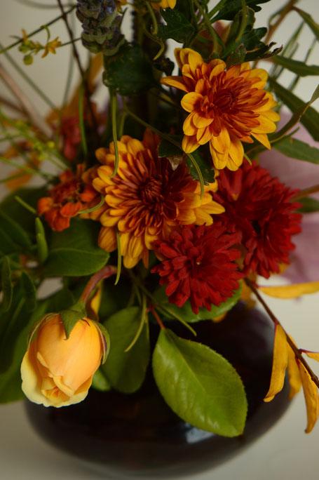in a vase on monday, monday vase, desert garden, small sunny garden, amy myers, photographer, photography, chrysanthemum, graham thomas, rose