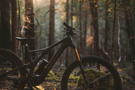 S-Works Turbo Levo SL e-Mountainbike