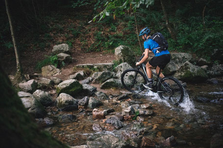 Cannondale Trail NEO 2020 im Test