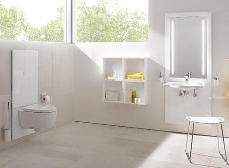 Höhenverstellbarer Waschtisch und WC