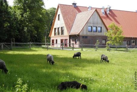 """Auf Gut Karlshöhe lohnen sich zusätzlich ein Besuch der Ausstellung """"jahreszeitHAMBURG"""" sowie ein Rundgang über das Gelände"""