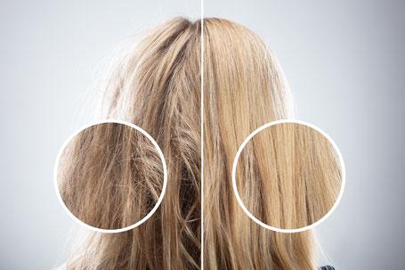 Krauses, widerspenstiges Haar oder lieber glatt und seidig?