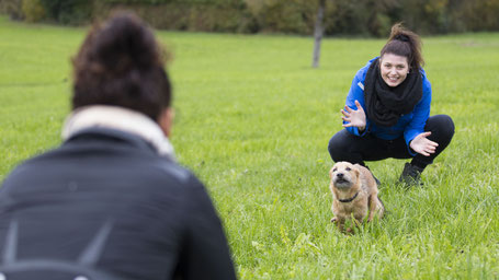 Obligatorische Hundekurse, Hundeverhaltensberatung und Hundetraining in Effretikon, Illnau, Bassersdorf, Nürensdorf, Tagelswangen, Lindau, Winterberg, Brütten, Wangen-Brüttisellen