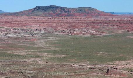 Wüste New Mexiko
