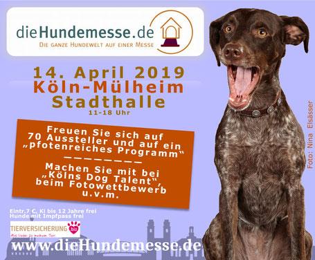 Die Hundemesse Köln, Plakat