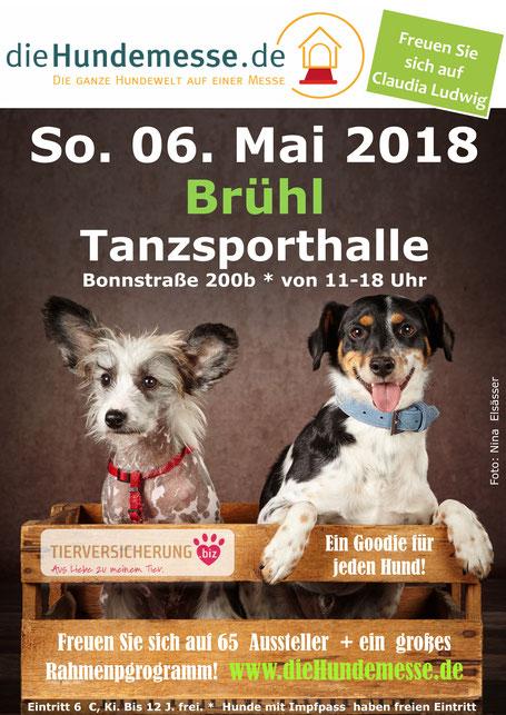 Plakat Hundemesse Brühl