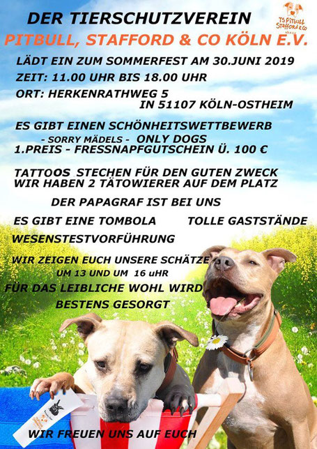 Plakat Sommerfest Pitbull Stafford & Co
