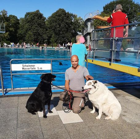 Tiertafelkollege Sven mit seinen Hunden