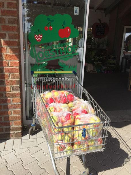 40 kg Äpfel, Foto: Plück