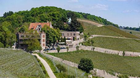 Würzburg Hotel Tipps: Schlosshotel Steinburg