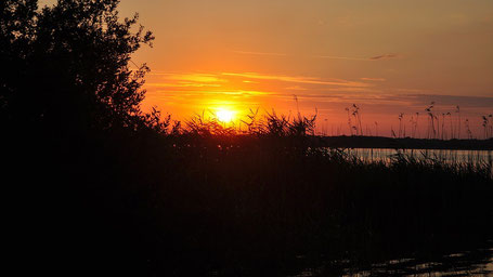 Mecklenburgische Seenplatte Sehenswürdigkeiten: Plauer See