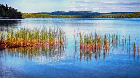 Kanada Osten Rundreise: Am See im Algonquin Park