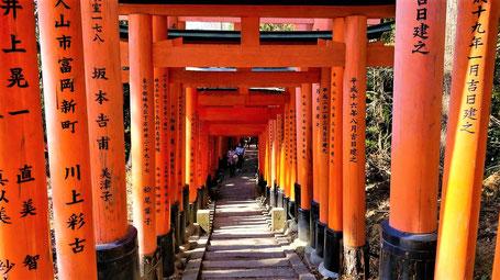 Japan Tipps Kyoto