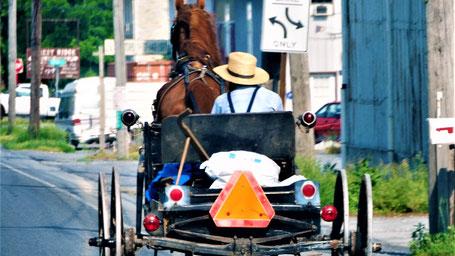 Rundreise USA Ostküste: Feierabendverkehr im Amish Land