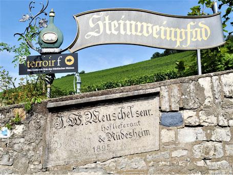Würzburg Sehenswürdigkeiten: Der Steinweinpfad...