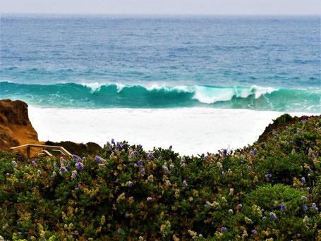 Kalifornien Rundreise Route: Wilde Küsten am Highway 1