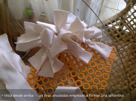 mi-miga-alfombra-olfativa-gatos_4