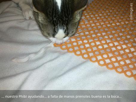 mi-miga-alfombra-olfativa-gatos-diy-phibi_1