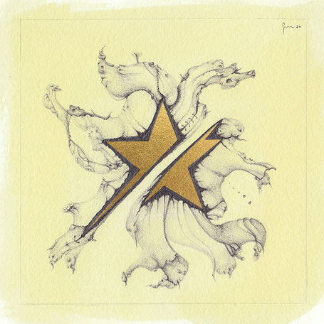 48-Stella divisa Oro