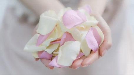 花育 フラワーセラピー 静岡
