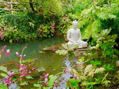 Buddha in Heller Garten am Gardasee Miss Ellie Gartenreise Italien