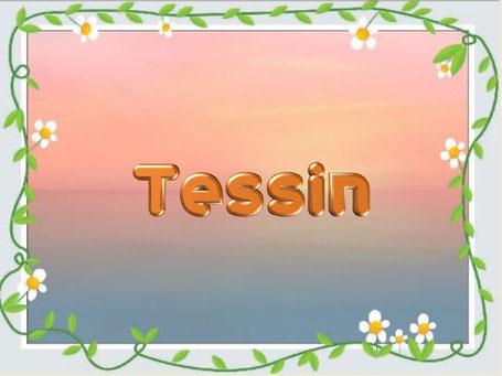 Dieses Bild zeigt einen schönen Hintergrund mit Pastellfarben. Darübe rist ein Rand aus Blumenranken gelegt. Ein Schriftzug zeigt: Tessin. es geht um die Namensherkunft der Region.