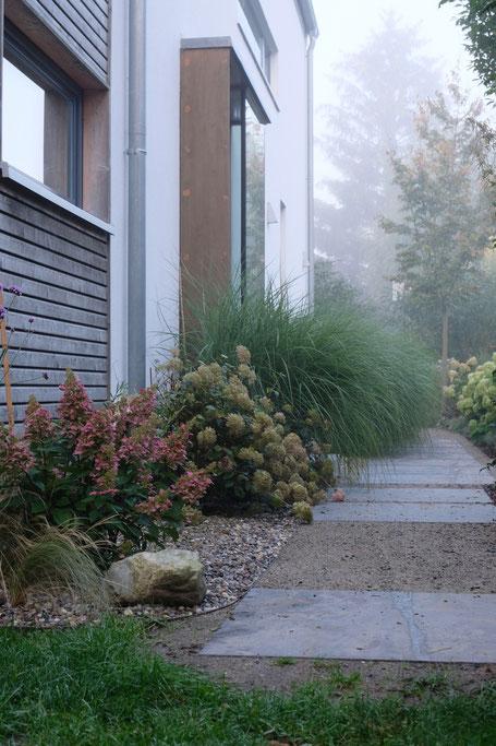 dieartigeGARTEN // Nebel im Herbstgarten - Norden, Weg, Blaustein + Chinaschilf + Hortensien