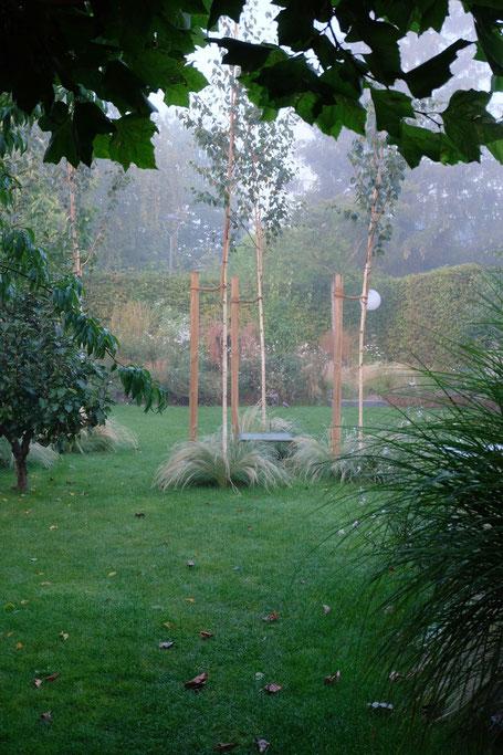dieartigeGARTEN // Nebel im Herbstgarten - Birken + Federgras