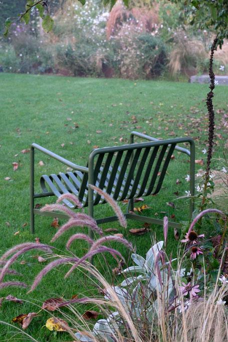 dieartigeGARTEN // Nebel im Herbstgarten - Waagerechte Herbstaster
