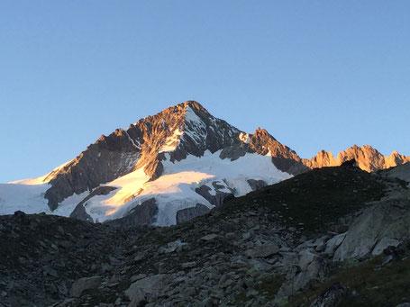Bergsteigen Aletschhorn