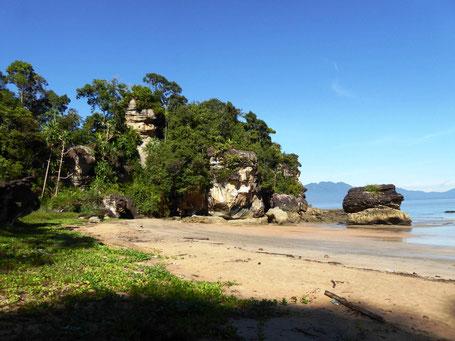 Het Bako National Park in Sarawak op Borneo