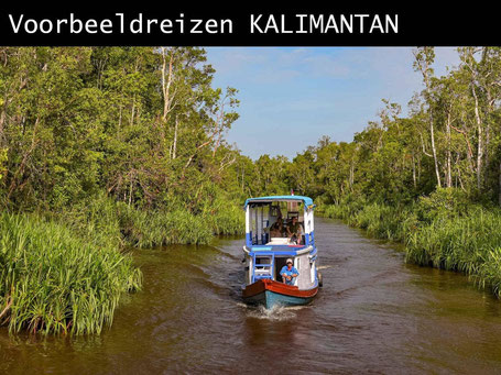 Boottocht Tanjung Puting National Park op Kalimantan