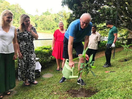 Bomen planten voor CO2 compensatie