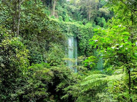 Prachtige waterval op Lombok