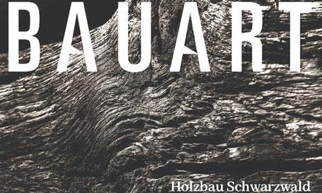 Bauart 2019 Eindachhof Waldkirch Schwarzwald storz.architektur