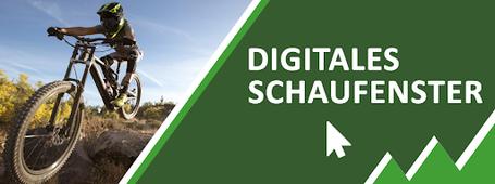 Digitales Schaufenster Wien