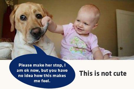 """Nicht süß! Die Augen des Hundes und sein Körperschwerpunkt sind vom Kind abgewandt - eine nette Geste, die signalisieren soll: """"Ich fühle mich nicht wohl"""""""