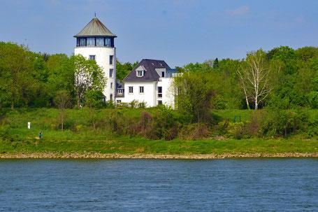 Schönes Anwesen direkt am Rhein (Foto: A. Haas)