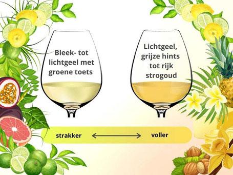 Chardonnay en Sauvignon Blanc kleur