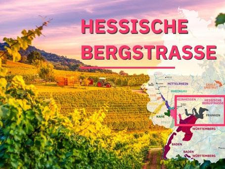Wijngebieden Duitsland #4 Hessische Bergstrasse