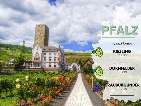 Wijngebieden Duitsland #Pfalz