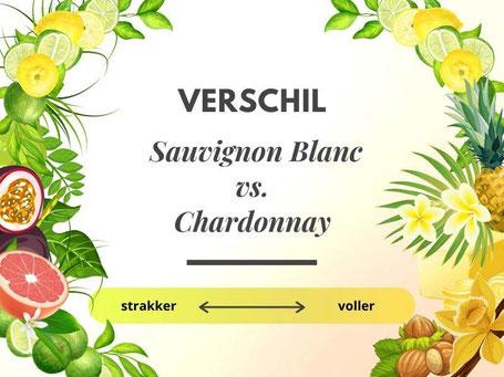 Verschil Chardonnay en Sauvignon Blanc